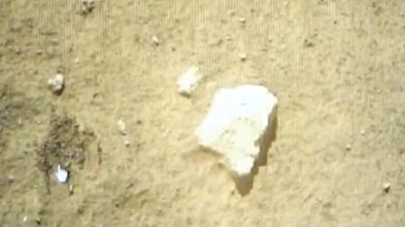 嫦娥攬月 蟾宮挖寶:嫦娥五號月面採樣順利實施
