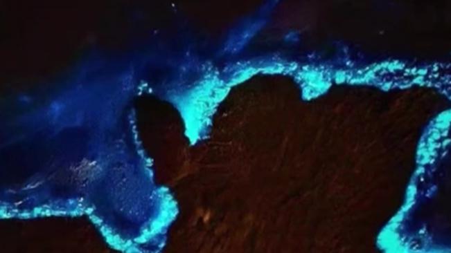 廣西北海:潿洲島再現熒光海灘 宛如藍色星河