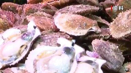 多地發出安全警示:赤潮高發期 食用貝類需謹慎