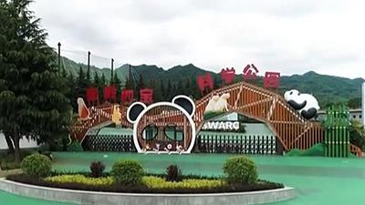 秦嶺大熊貓繁育研究中心即將對外開放