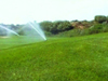 聚焦水流困局:追問沙漠高爾夫