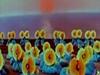 【檔案】周恩來與音樂舞蹈史詩東方紅
