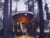 [探索發現]UFO出沒幽暗森林
