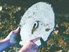 [探索發現]秘境追蹤:中國石碟