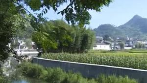農業水價綜合改革 頂層設計出臺