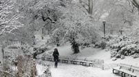 美國多地遭遇嚴寒暴雪
