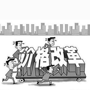 [新華要聞]今年價格改革鎖定七大任務