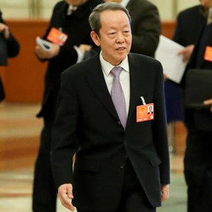 [兩會之聲]王光亞談香港回歸20年