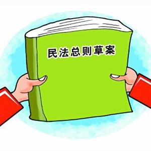 [新華縱橫]解讀民法總則草案(上)