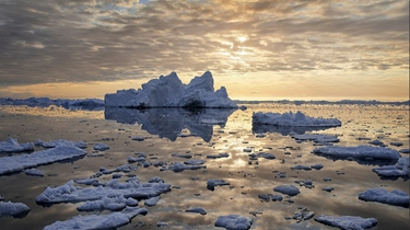 """北極冰層融化或給海洋生物""""加餐"""""""