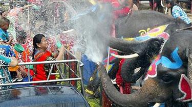 """狂歡!泰歷新年大象上街 玩""""潑水""""與遊客互動"""