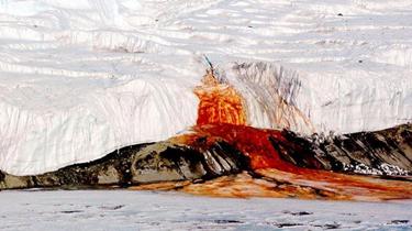 """流血的冰川?南極""""血瀑布""""成因揭開"""