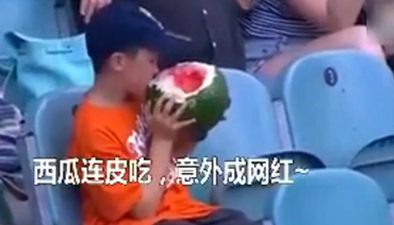澳大利亞:球場吃西瓜 男孩搶風頭