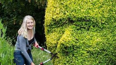 精巧!修剪樹籬變人臉