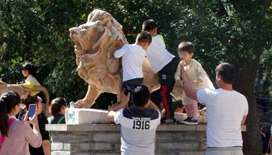 錢江晚報:熊孩子背後 是無視規則的熊家長