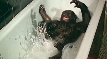 最手舞足蹈的洗澡