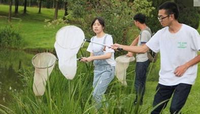 活捉昆蟲三百只 這個暑假作業算難不