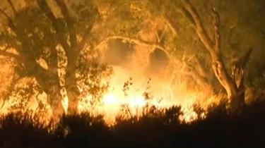 美國:加州山火借高溫天氣蔓延迅速