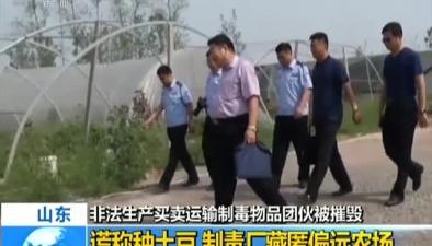非法生産買賣運輸制毒物品團夥被摧毀謊稱種土豆 制毒廠藏匿偏遠農場
