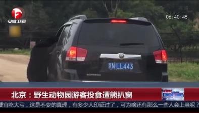 北京:野生動物園遊客投食遭熊扒窗