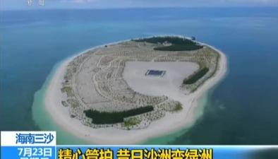 海南三沙:精心管護 昔日沙洲變綠洲