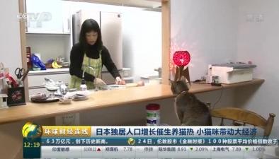 日本獨居人口增長催生養貓熱 小貓咪帶動大經濟