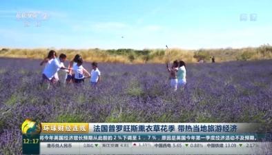 法國普羅旺斯薰衣草花季 帶熱當地旅遊經濟
