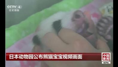 日本動物園公布熊貓寶寶視頻畫面