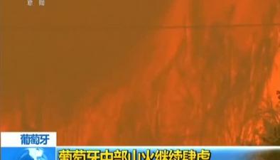 葡萄牙中部山火繼續肆虐