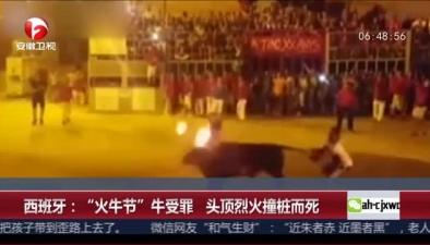"""西班牙:""""火牛節""""牛受罪 頭頂烈火撞樁而死"""