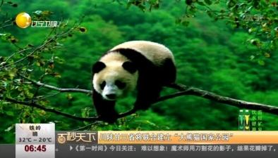 """川陜甘三省將聯合建立""""大熊貓國家公園"""""""