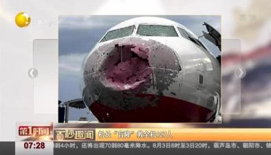 """客機遇冰雹 機長""""盲降""""救全機127人"""