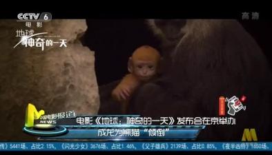 """電影《地球:神奇的一天》發布會在京舉辦:成龍為熊貓""""傾倒"""""""