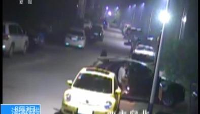 法治現場:專偷高檔汽車 深夜戴面具作案