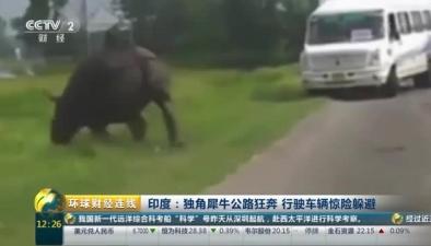 印度:獨角犀牛公路狂奔 行駛車輛驚險躲避