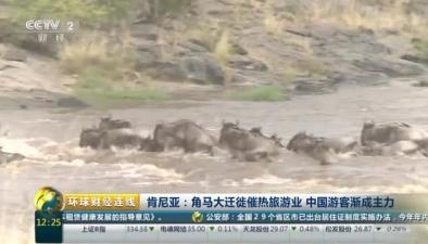 肯尼亞:角馬大遷徙催熱旅遊業 中國遊客漸成主力