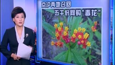 """京滬兩地召回五千份網購""""毒花"""""""