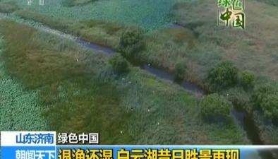 山東濟南:退漁還濕 白雲湖昔日勝景再現