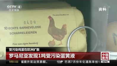 受污染雞蛋在歐洲擴散:羅馬尼亞發現1噸受污染蛋黃液