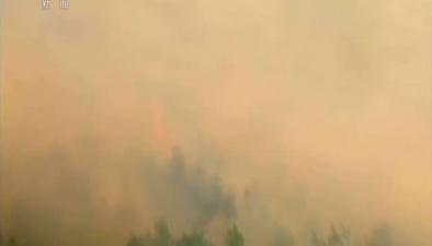 希臘:雅典附近山火仍未被完全控制