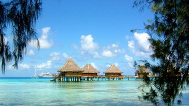 石家莊:出境遊價格跳水近五成 暑期末出遊很劃算