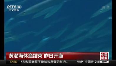 黃渤海休漁結束 昨日開漁