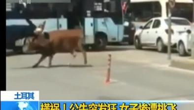 土耳其:橫禍!公牛突發狂 女子慘遭挑飛