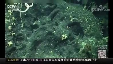 """""""科學""""號探秘卡羅琳海山 發現""""珊瑚林""""""""海綿場"""""""