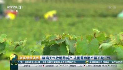 極端天氣致葡萄減産 法國葡萄酒産量下跌17%