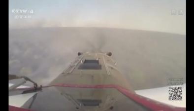 巴西:森林大火燒毀大片林地
