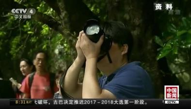 國慶假期預計國內遊客7.1億人次