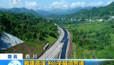 四川:雅康高速飛仙關隧道貫通