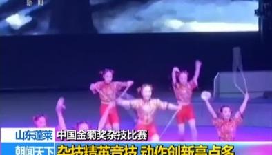 中國金菊獎雜技比賽:雜技精英競技 動作創新亮點多