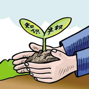 """[評""""新""""而論]優化知識産權環境激活商業往來"""